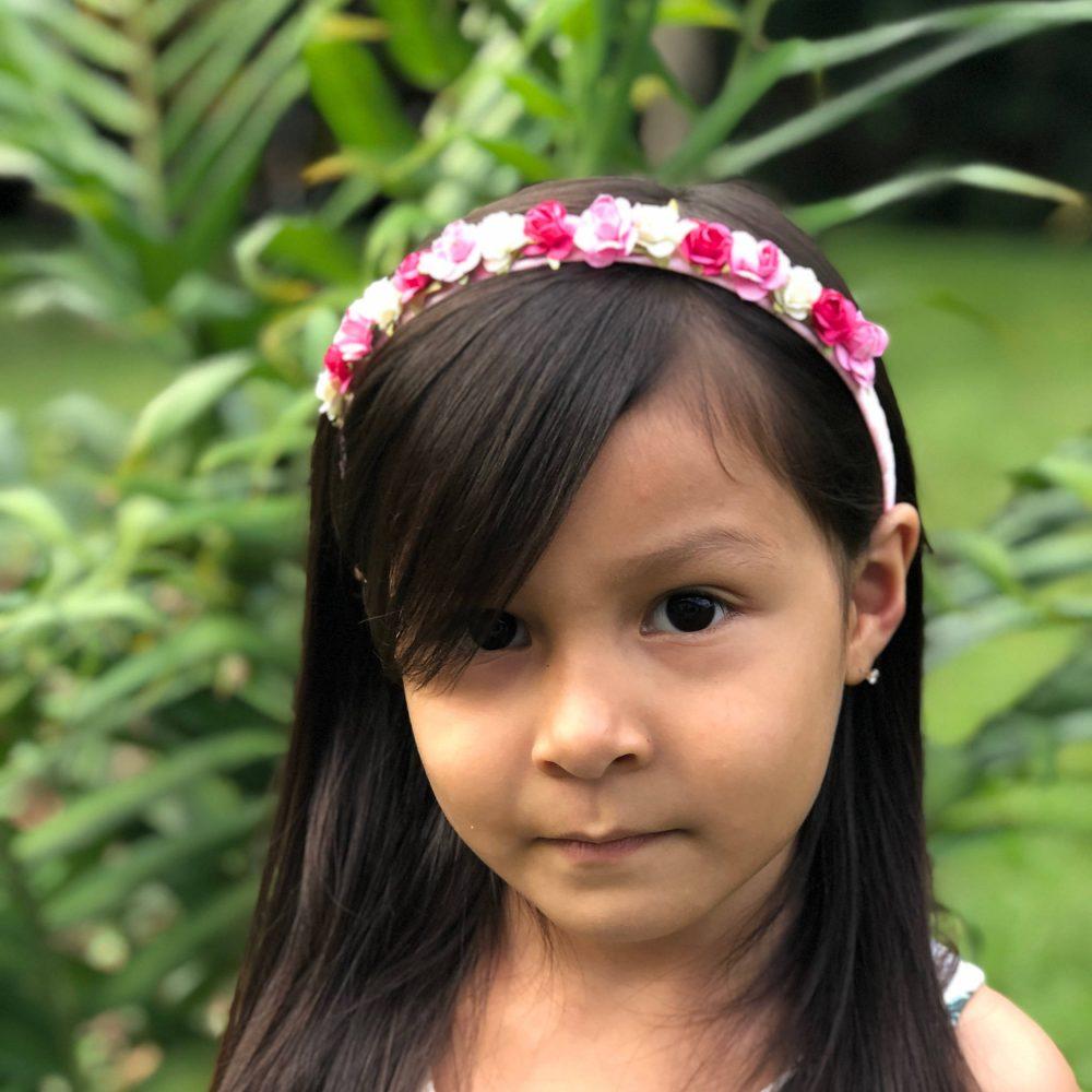 Diadema Rosada con Flores