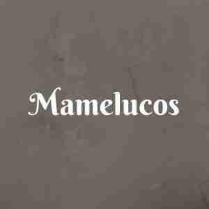 Mamelucos